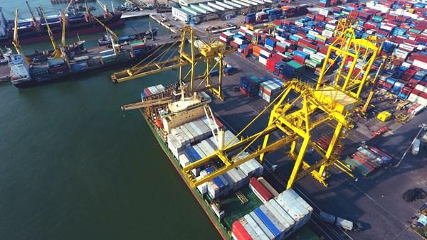 Des investisseurs neerlandais veulent investir dans les infrastructures portuaires au Vietnam hinh anh 1