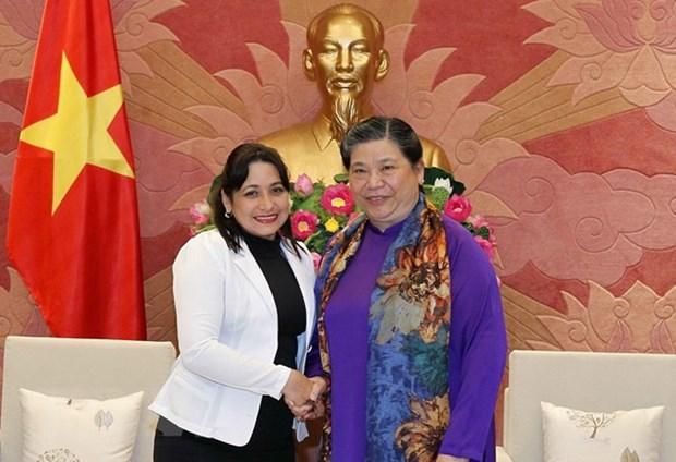 Promouvoir les relations des jeunesses vietnamiennes et cubaines hinh anh 1