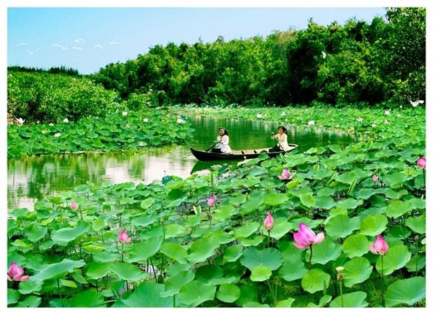 Dong Thap : la Fete des fleurs de lotus 2018 hinh anh 1