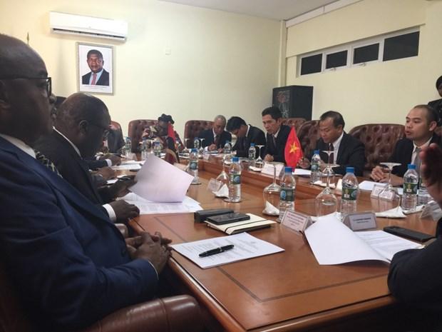 Le Vietnam intensifie sa cooperation avec l'Angola et la Namibie hinh anh 1