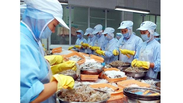 L'UE, premier marche importateur de crevettes vietnamiennes hinh anh 1