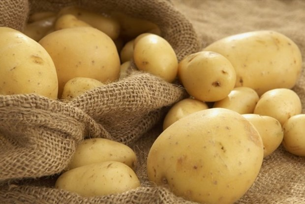 Vietnam, marche prometteur pour les exportateurs etrangers de pommes de terre hinh anh 1