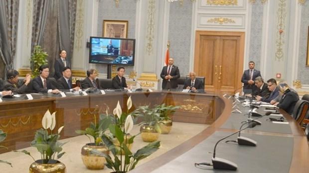Le Vietnam, partenaire fiable de l'Egypte en Asie du Sud-Est hinh anh 1