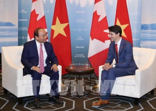Rehausser la position du Vietnam et creer une nouvelle force dans ses relations avec le Canada hinh anh 1