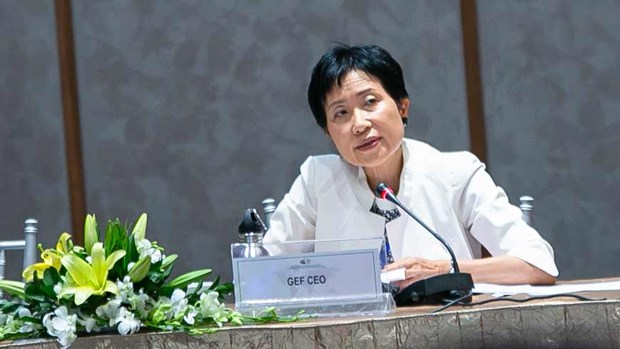 Le Conseil du FEM appelle a accroitre l'ambition en matiere d'environnement hinh anh 1