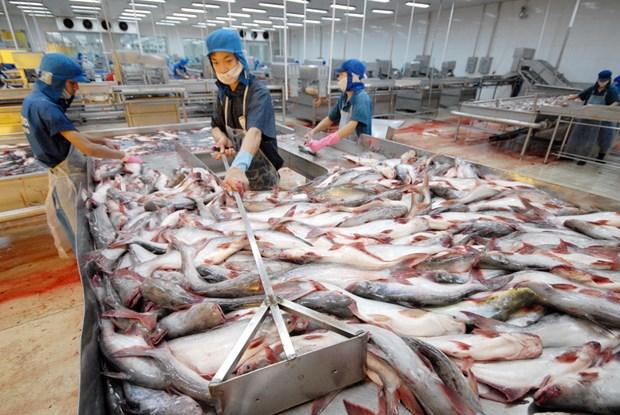 La Chine baisse ses droits de douane sur des produits aquatiques hinh anh 1