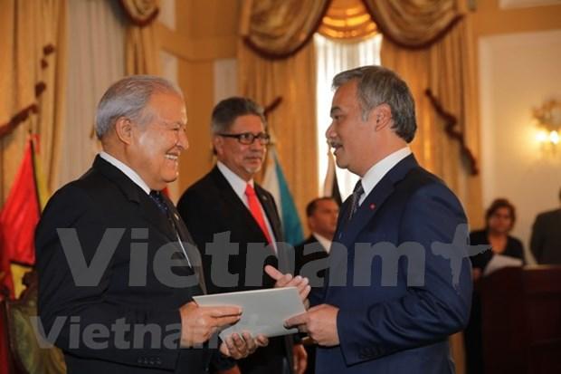 Le president du Salvador apprecie la cooperation multiforme avec le Vietnam hinh anh 1