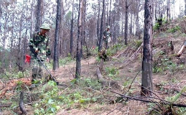 De nouveaux efforts pour regler les consequences des bombes et mines hinh anh 1
