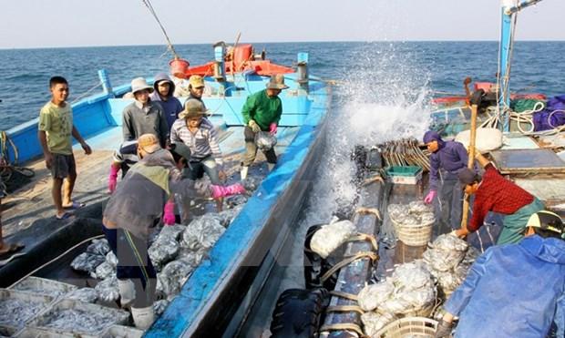Aquaculture : le Vietnam adhere a l'accord PSMA de la FAO hinh anh 1
