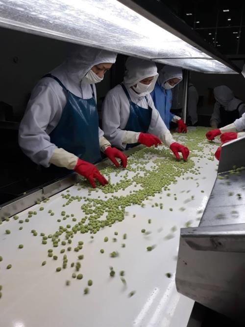 Creation de 885 nouvelles entreprises agricoles au premier semestre hinh anh 1