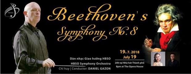 Concert en l'honneur des 45 ans de l'etablissement des liens diplomatiques Vietnam-Belgique hinh anh 1