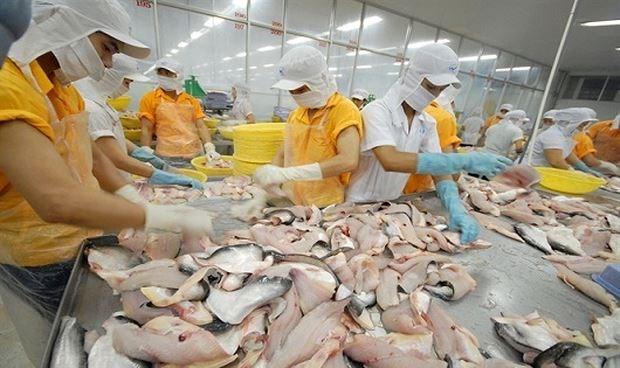 Accelerer les exportations des produits aquatiques vers le Bresil hinh anh 1