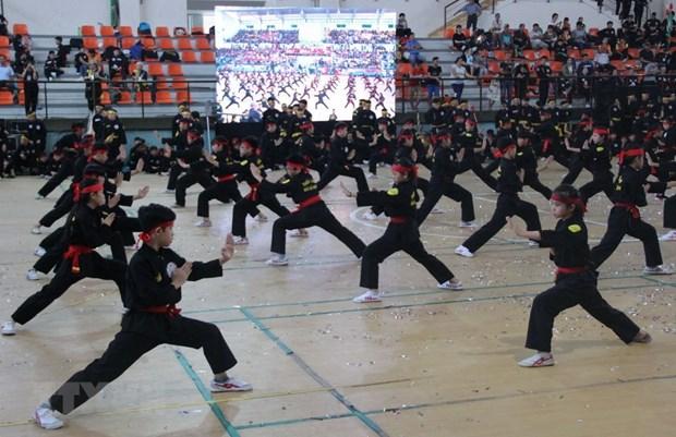 Ouverture de deux festivals d'arts martiaux traditionnels a Ho Chi Minh-Ville hinh anh 1