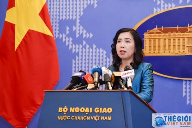 Visas de travail pour les ressortissants vietnamiens: Hanoi prete a cooperer avec Prague hinh anh 1