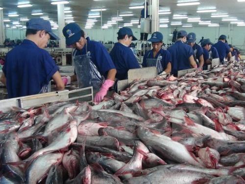 Exportation de produits aquatiques : une hausse de 13% prevue au 3e trimestre hinh anh 1