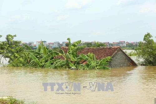 Nord : pluies et crues font 6 morts et 5 disparus hinh anh 1