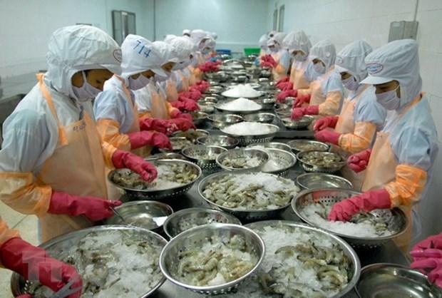 Assurer la qualite des crevettes exportees vers la R. de Coree hinh anh 1