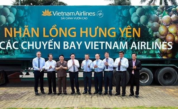 Les longanes de Hung Yen servis sur des vols de Vietnam Airlines hinh anh 1