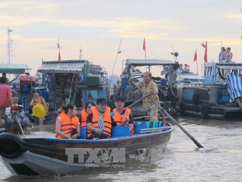 Pour developper efficacement la zone touristique de l'Ouest du delta du Mekong hinh anh 1