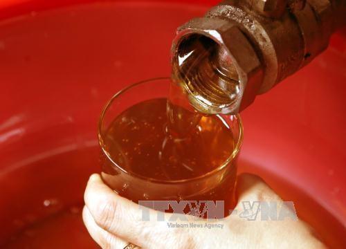 Le Vietnam classe au 2e rang des pays asiatiques exportateurs de miel hinh anh 1