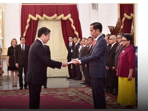 Approfondir le partenariat strategique Vietnam-Indonesie hinh anh 1