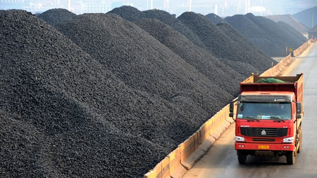 Le Japon, 1er marche a l'export du charbon vietnamien hinh anh 1
