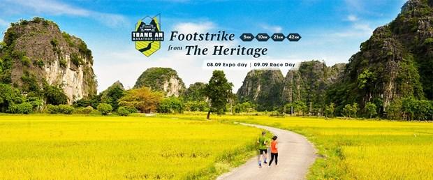 Plus de 800 coureurs au marathon de Trang An 2018 hinh anh 1