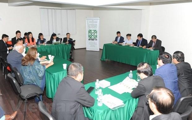 Les entreprises vietnamiennes cherchent a s'implanter sur le marche mexicain hinh anh 1