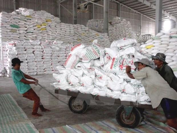 Perspective prometteuse pour les exportations de riz au quatrieme trimestre hinh anh 1