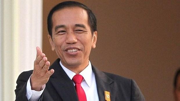 Le president indonesien entame sa visite d'Etat au Vietnam hinh anh 1