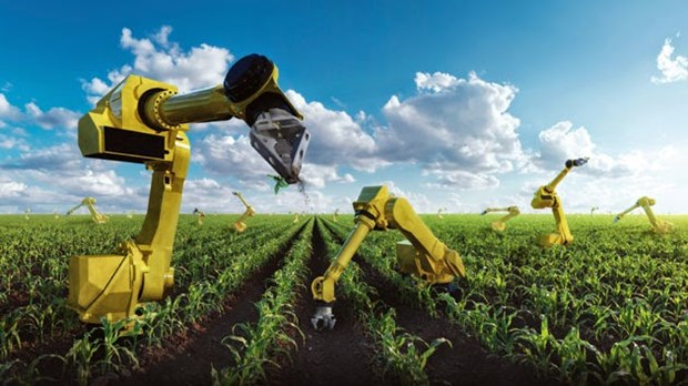 Des societes etrangeres cherchent des opportunites d'investir dans l'agriculture high-tech hinh anh 1