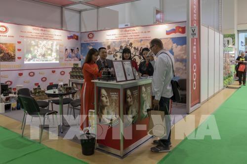 Effort pour faire penetrer des produits vietnamiens en Russie hinh anh 1