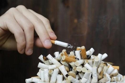 Partage des experiences dans la communication sur la lutte contre les mefaits du tabagisme hinh anh 1