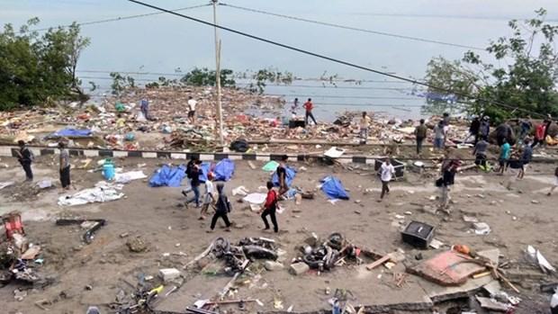 Seisme et tsunami en Indonesie: le bilan monte a plusieurs centaines de morts hinh anh 1