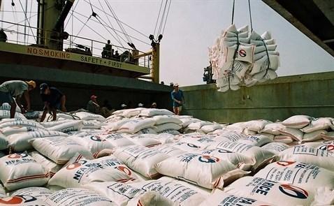 Belles perspectives pour les exportations nationales de riz d'ici la fin de l'annee hinh anh 1
