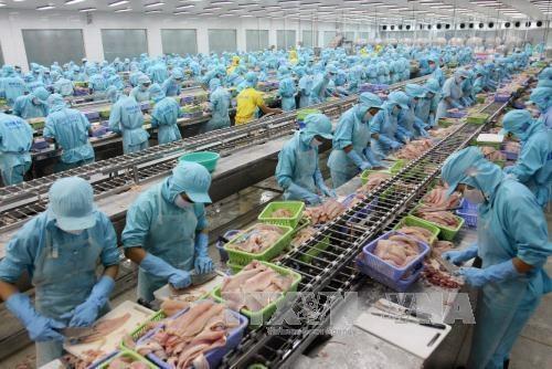Can Tho enregistre une forte croissance des exportations hinh anh 1