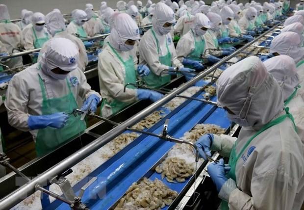 Aquaculture : les exportations en 2018 pourrait atteindre neuf milliards de dollars hinh anh 1