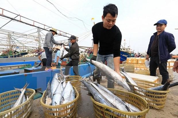 Aquaculture : les exportations en 2018 pourrait atteindre neuf milliards de dollars hinh anh 2