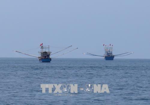 Des percees dans la gestion des ressources maritimes hinh anh 1