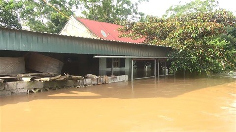 Le changement climatique et les efforts d'adaptation du Vietnam hinh anh 2