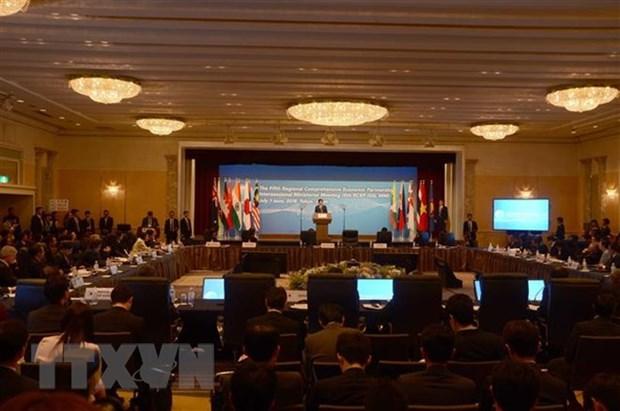 Les pays s'efforceront d'achever les negociations du RCEP dans les delais fixes hinh anh 1