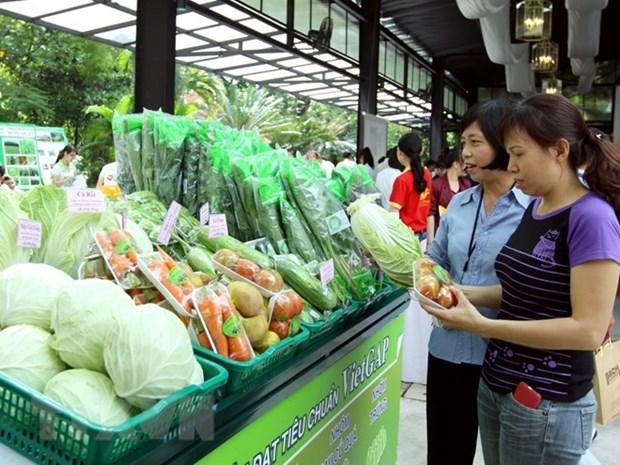 Pres de 80% des magasins de fruits a Hanoi repondent aux normes de securite hinh anh 1