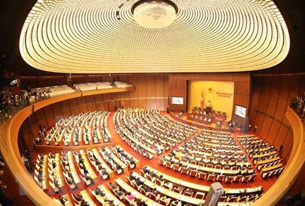 Assemblee nationale: le vote de confiance ou le droit de supervision des electeurs hinh anh 1