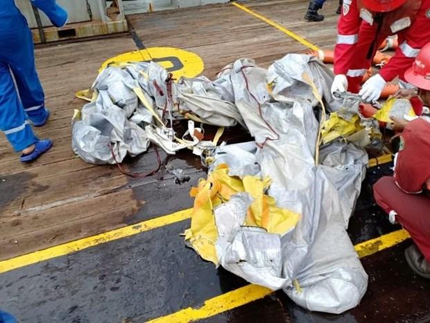 Un BOEING 737 de la compagnie aerienne indonesienne low-cost Lion Air s'ecrase dans la mer hinh anh 1
