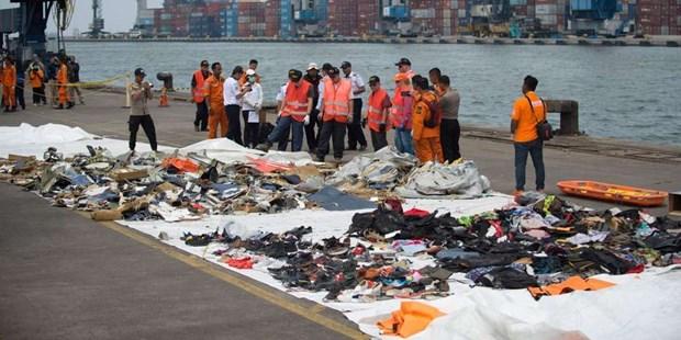 Crash en Indonesie: l'une des boites noires de l'avion recuperee hinh anh 1
