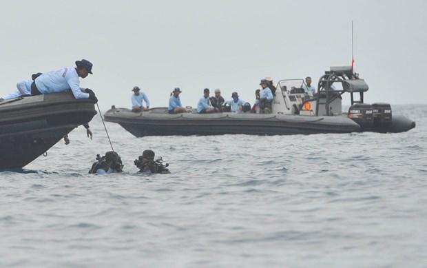 Crash de l'avion en Indonesie: des signaux des boites noires detectes hinh anh 1