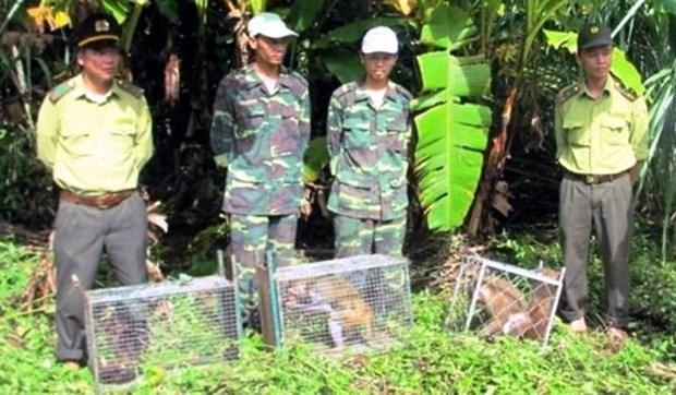 Quang Binh relache dans la nature 18 animaux sauvages hinh anh 1