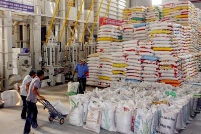 La Thailande et le Vietnam exportent 50 % du riz dans le monde hinh anh 1