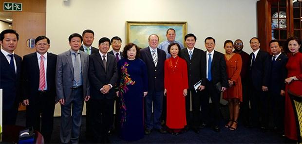 Dynamiser la cooperation Hanoi - Afrique du Sud - Singapour hinh anh 1