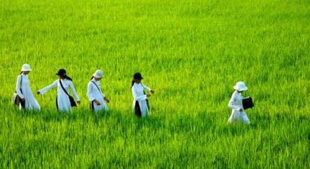 Le Vietnam, l'un des pays les plus pacifiques du monde hinh anh 2